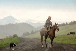Dette billede blev den absolutte vinder af dette års IFAJ-fotokonkurrence bedømt af en international jury.