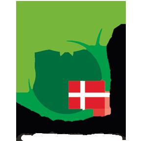 Vil DU Give En Hånd Med Som Frivillig Til IFAJ Kongressen I 2022, Som Vores Forening Står For At Arrangere?